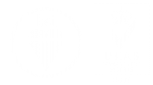 logo-45001-white